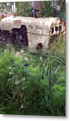 David Brown Grown Metal Print by Jez C Self