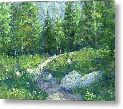 Day Hike Metal Print by David King