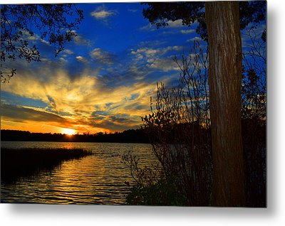 Day Is Done Metal Print by Dianne Cowen