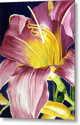 Day Lily In Sunlight Metal Print by Janis Grau