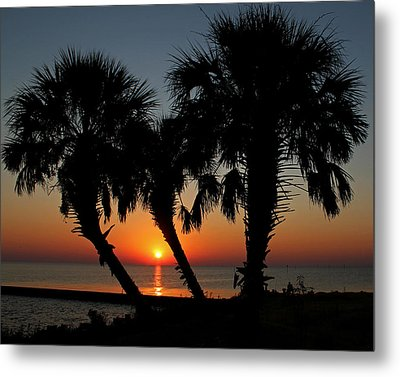 Metal Print featuring the photograph Daybreak by Judy Vincent