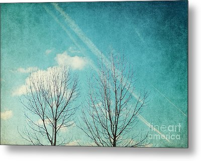 Daydreamer Metal Print by Angela Doelling AD DESIGN Photo and PhotoArt