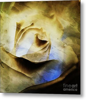Metal Print featuring the painting Days Go By - Rose - Dreamscape by Janine Riley