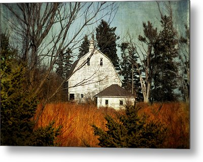 Metal Print featuring the photograph Days Gone By by Julie Hamilton