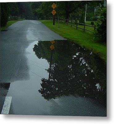 Dead End Puddle Metal Print by Ron Sylvia