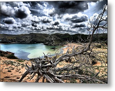 Dead Nature Under Stormy Light In Mediterranean Beach Metal Print by Pedro Cardona