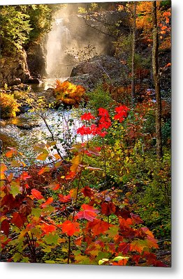Dead River Falls Foreground Plus Mist 2509 Metal Print