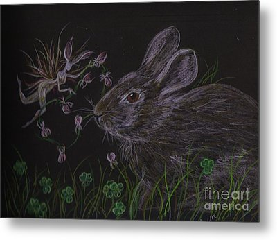 Metal Print featuring the drawing Dearest Bunny Eat The Clover And Let The Garden Be by Dawn Fairies