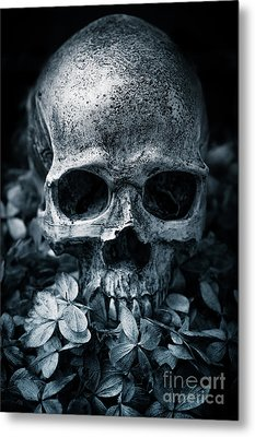 Metal Print featuring the photograph Death Comes To Us All by Edward Fielding
