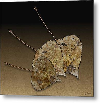 Metal Print featuring the photograph Decaying Leaves by Joe Bonita