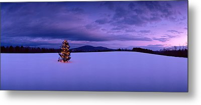 Decorated Christmas Tree In A Snow Metal Print by Panoramic Images