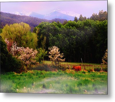 Metal Print featuring the photograph Deep Breath Of Spring El Valle New Mexico by Anastasia Savage Ealy