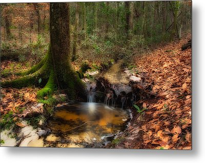 Deep Forest Creek Metal Print by Rich Leighton