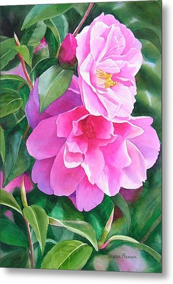 Deep Pink Camellias Metal Print by Sharon Freeman