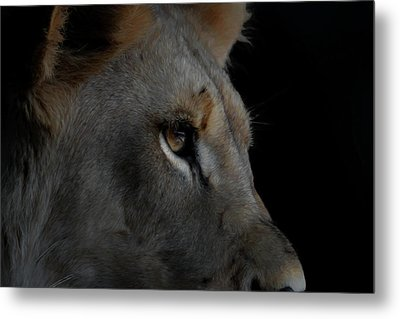 Metal Print featuring the digital art Deep Thought by Ernie Echols