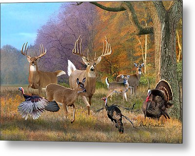 Deer Art - Field Of Dreams Metal Print by Dale Kunkel Art