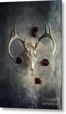 Metal Print featuring the photograph Deer Buck Skull With Fallen Leaves by Stephanie Frey