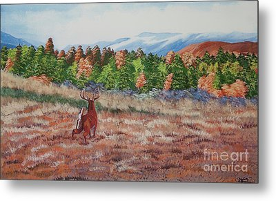 Deer In Fall Metal Print by Charlotte Blanchard
