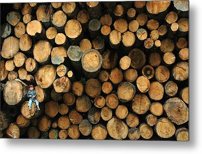 Deforestation Metal Print by Gaffuri Mario