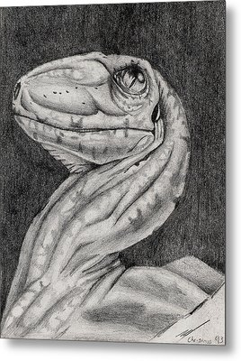 Metal Print featuring the drawing Deino Hatch Sketch by Michael McKenzie