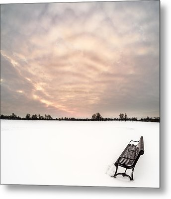 Metal Print featuring the photograph Delaware Park Winter Solace by Chris Bordeleau