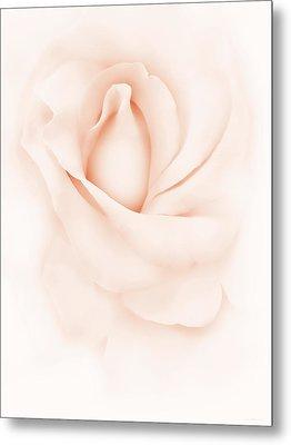 Delicate Peach Rose Flower Metal Print by Jennie Marie Schell