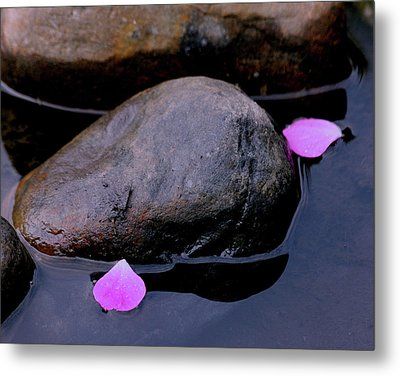 Metal Print featuring the photograph Delicate Petals With Rocks by Doris Potter