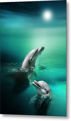 Delightful Dolphins Metal Print by Julie L Hoddinott