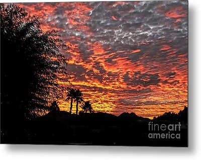 Metal Print featuring the photograph Delightful Evening by Robert Bales