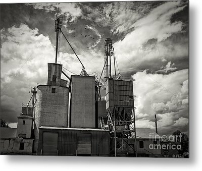 Delta Colorado Grain Elevator Metal Print by Janice Rae Pariza
