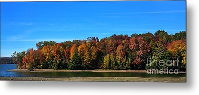 Metal Print featuring the photograph Delta Lake State Park Foliage by Diane E Berry