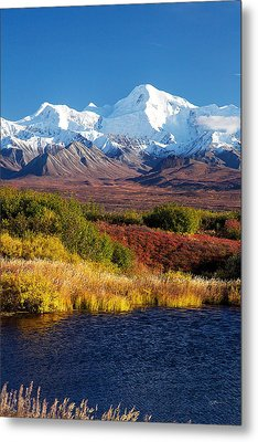 Denali Autumn Metal Print by Ed Boudreau