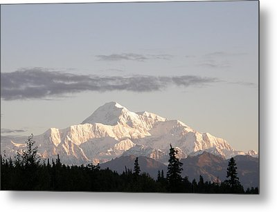 Metal Print featuring the photograph Denali Photo by Judy Mercer