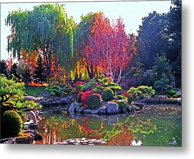 Denver Botanical Gardens 3 Metal Print by Steve Ohlsen