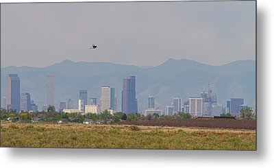 Denver Colorado Pretty Bird Fly By Metal Print by James BO Insogna