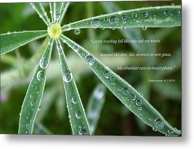 Descending Words Like Dew Metal Print