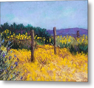 Desert Bloom Metal Print by Candy Mayer