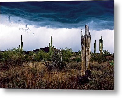 Desert Cactus Storms At The Superstitions Mountains Metal Print
