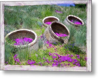 Desert Flowers Metal Print by Joan Carroll