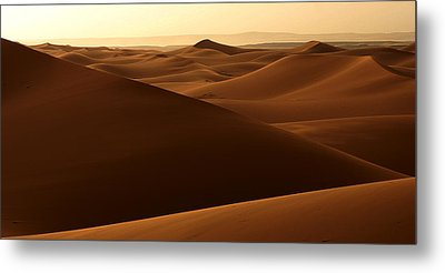 Desert Impression Metal Print
