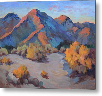 Metal Print featuring the painting Desert Light by Diane McClary