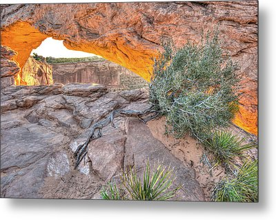 Desert Morning - Canyonlands National Park Metal Print by Gregory Ballos