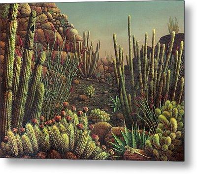 Desert Potpourri  Metal Print by James Larkin
