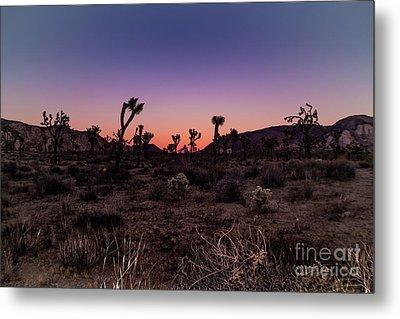 Desert Sunrise Joshua Tree National Park Metal Print
