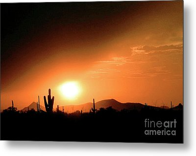 Desert Sunset Metal Print by Merton Allen