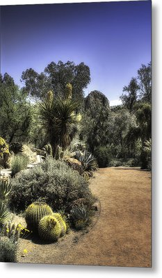 Metal Print featuring the photograph Desert Walkway by Lynn Geoffroy