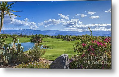 Desert Willow Golf Course  Metal Print by David Zanzinger