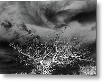Desolate Feel Metal Print