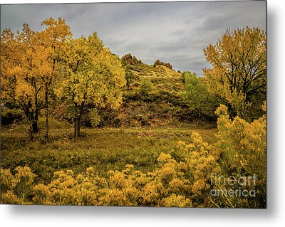 Devils Backbone Autumn Colors Metal Print