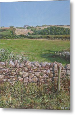 Metal Print featuring the painting Devon Field And Drystone Wall by Martin Davey